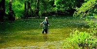 Peak Fly Fishing